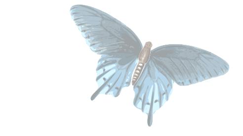 Butterfly - Copy (2)